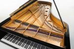 Piano Barenboim MAENE